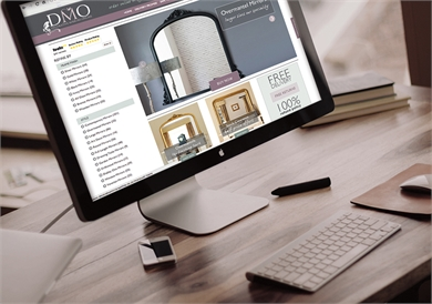Website Design for DMO